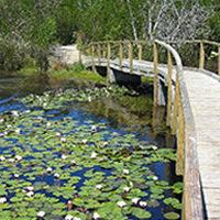 durbanville nature reserves