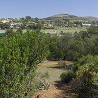 durbanville nature reserves1